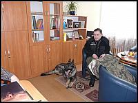 images/stories/galeria/akcjazima2010/640_P1040189.JPG